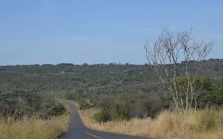 Visão geral da Reserva Ecológica do Panga